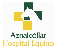 Aznalcollar Hospital Equino