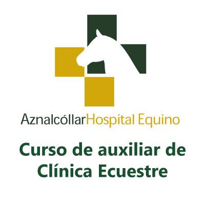 Curso Auxiliar de Clínica Ecuestre | Aznalcóllar Hospital Equino